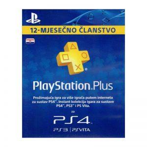 PlayStation-Plus-Card-365-Days-Hanger.jpg-2-